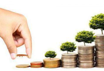Los bancos de inversión – ¿qué es esto? Tipos y funciones de los bancos de inversión