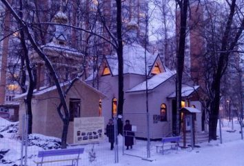 Tempio di Xenia di Pietroburgo nel Beskudnikovo oggi e domani