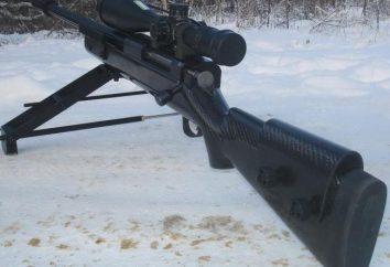 Lobaev Scharfschützengewehr: Spezifikationen, Bewertungen, Preis, Foto