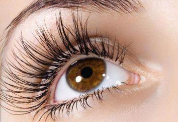 Augenbrauen-Klette: Anwendungsfunktionen und überprüft das Ergebnis