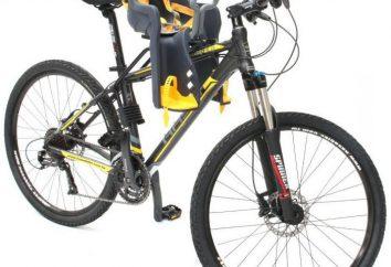 Sedie per bambini nel telaio della bicicletta e il tronco: come scegliere ed installare