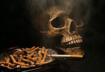 Vieni con la sigaretta sempre più sicuro?