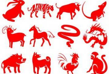 1971 – rok zwierzęcia na wschodnim kalendarzu? Charakterystyka 1971 znaków