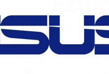 ASUS P5B Plus. Visão geral motherboard