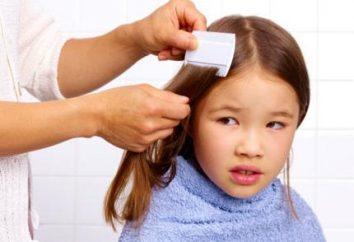 Pédiculose chez les enfants: ce que vous devez savoir?