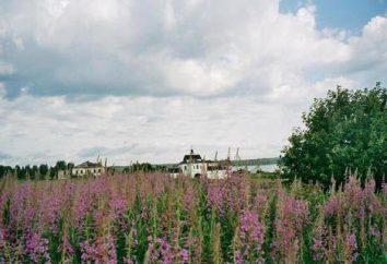 Kozheozersky Klasztor – opis, historia i ciekawostki