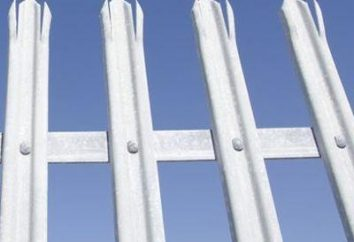 Zaun Metallaufnahme