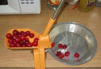 Máquina para picada cerejas – uma ferramenta indispensável para a preservação da casa