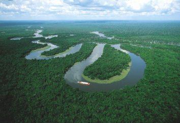 Największe rzeki Ameryki Południowej