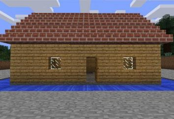 """Was können Sie in """"Maynkraft"""" bauen? Minecraft: Beratung, Anleitung"""