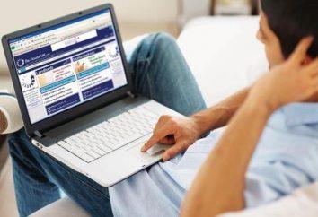 Ganancias reales. Navegación por Internet: ¿cómo aumentar los ingresos?