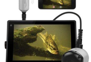 macchina fotografica subacquea per la pesca invernale con le mani da uno smartphone