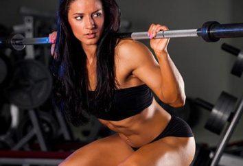 El conjunto básico de ejercicios en el gimnasio para las niñas