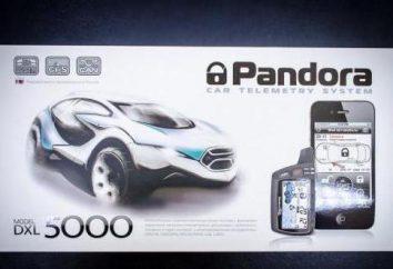 Car Alarm Pandora DXL 5000 Pro: Descrizione e installazione