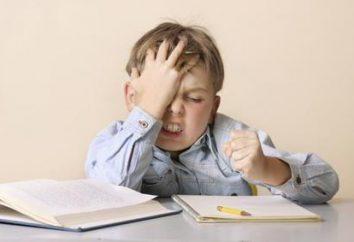 Essai, « Si j'étais le directeur de l'école »: pour commencer, quoi écrire, un exemple de fonctionnement