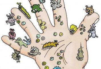 Source d'infection: définition, types, identification
