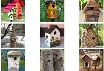 Birdhouse nietypowe: pomysły i zdjęcia