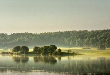 Dubrovsky Reservoir opis, wędkowanie
