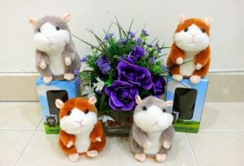 povtoryushka hamster brinquedo interativo
