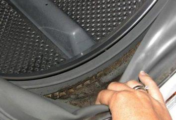 La moisissure dans la machine à laver: comment se débarrasser une fois pour toutes