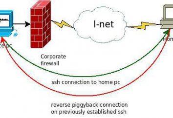 Jak skonfigurować i używać portu SSH? Krok po kroku