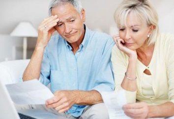 Versicherungen und finanziert einen Teil der Pension – die Hauptkomponenten der öffentlichen Bereitstellung