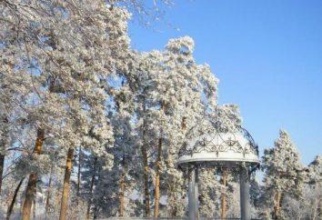"""""""Barnaul"""" (spa) trattamenti, recensioni, prezzi, foto e sito ufficiale"""