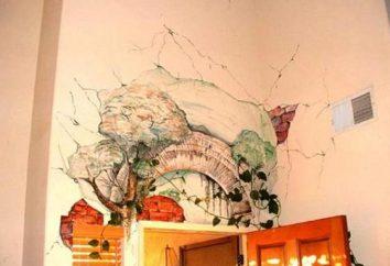 La décoration des murs de ses propres mains – une excellente occasion de rafraîchir leur apparence et économiser de l'argent