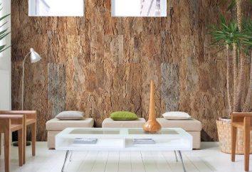 Cork revêtement de mur: les types et les caractéristiques de l'installation