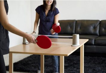 Ping-pong. Tennis de table (ping-pong). Règles table de ping-pong