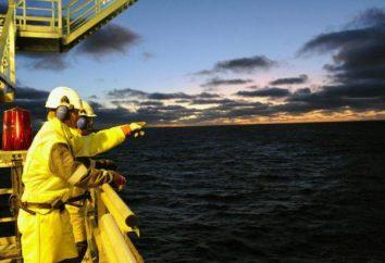 """Specjalność """"Oil and Gas Biznesu"""": jaki rodzaj zawodu?"""