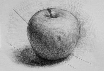 Jak narysować jabłko: nauczyć się widzieć piękno w zwykłym