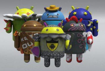 Jak zmienić firmware na urządzeniu z systemem Android?