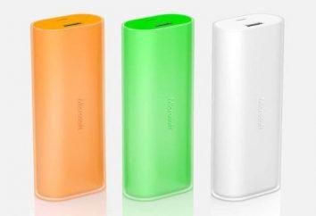 batteria esterna per il tablet: recensioni, test, confronto,