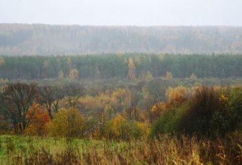 O Parque Nacional de Valdai: Descrição