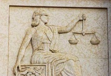 Spory Teren: dlaczego potrzebujemy doświadczonego prawnika