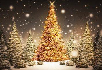 Zagadki świąteczne z odpowiedziami: o choinki, Santa Claus i wiele więcej