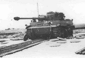 """Tanques alemães """"Tiger"""": características técnicas, dispositivo, modelo, foto, testes por bombardeio. Como o T-6 T-6 T-6 alemão penetrou nas armas soviéticas?"""