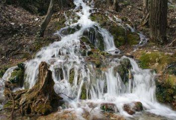 Dolina Neberdzhay: Holly Springs, które dają efekt