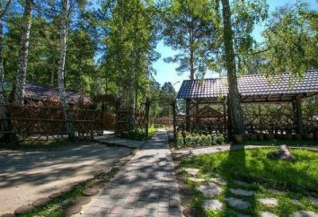 Parki-hotele Barnaul: ocena, opis, funkcje i opinie