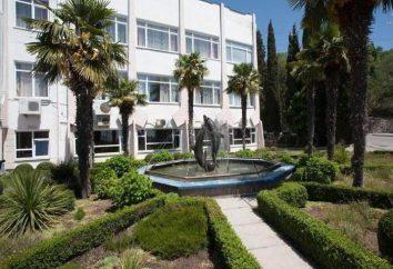 """Ripario Hotel Group (ex casa de huéspedes """"Costera"""") en Yalta"""