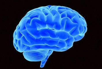Choroba głowy. Przyczyny, diagnoza, leczenie