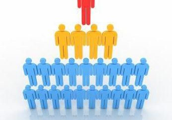 organizzazioni informali e formali: concetto, obiettivi e gli obiettivi