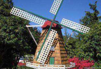 Ogród ozdobny Mill: stworzenie własnego oryginalnego obszaru dekoracji