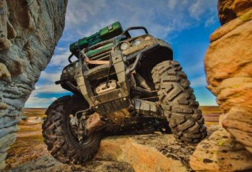 ATV RM-500 2: Bewertungen, Preis, Foto