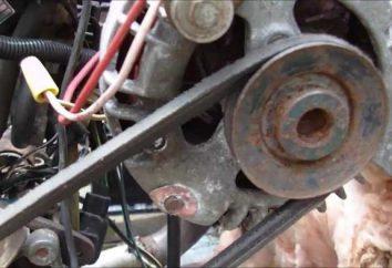 Wie man einen Windturbinengenerator aus dem Auto mit den Händen machen?