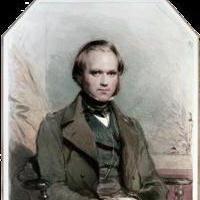 El científico Charles Darwin: una biografía, teorías y descubrimientos. Charles Darwin: una breve biografía