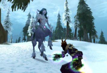 """Come installare Il mondo di """"World of Warcraft"""". Dove installare add-on per il """"World of Warcraft"""""""