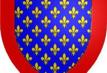 Valois (dyn). Historia Francji