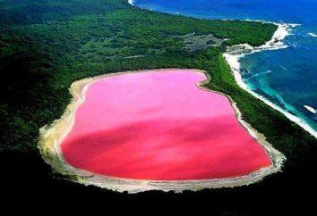 Incredibile in Australia: Hiller – lago di rosa con spiagge di sale
